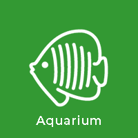 Aquarium