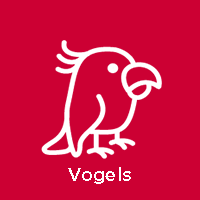 Vogels
